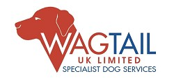 Wagtail UK featured recruiter logo